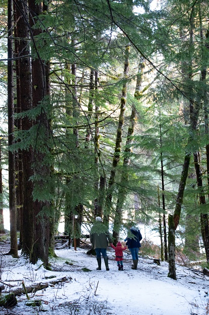 Hiking in Kitimat snowy forest