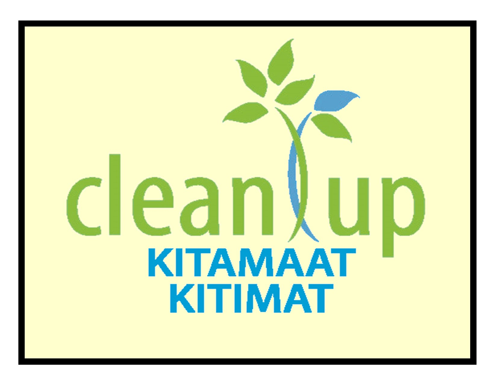 Annual Clean Up Campaigns